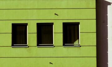 Green by by Jelena Zarevac / Serbia: fb/HelenShadowHelen