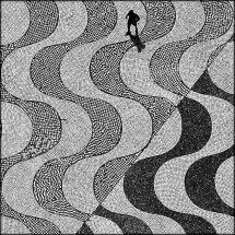 © Pedro Mesquita