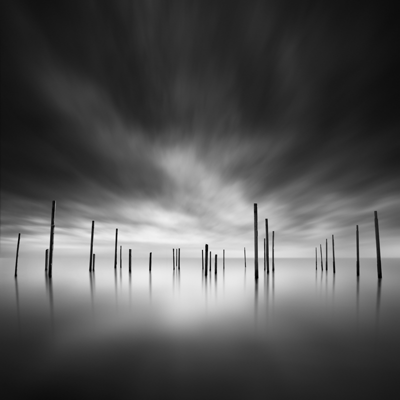 A Forest of pillars by George Digalakis 2018