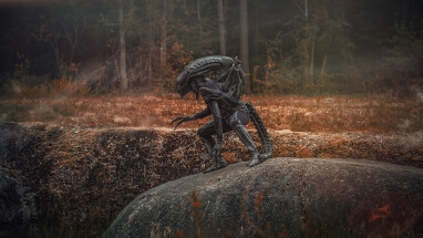 Alien 1 by Vitaly Shokhan: https://500px.com/vitx