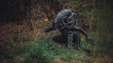 Alien 2 by Vitaly Shokhan: https://500px.com/vitx