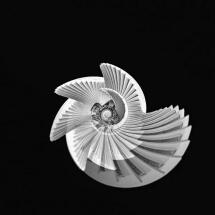 Armadillo by Giusy Baffi: 500px.com/giusybaffi