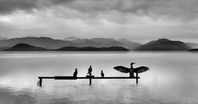 Stillness in the flow of time by George Digalakis