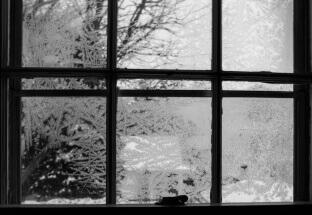 Frosted windows by Lane Billings: lanebillingsphotography.com