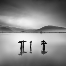 Fully Booked by George Digalakis 2018