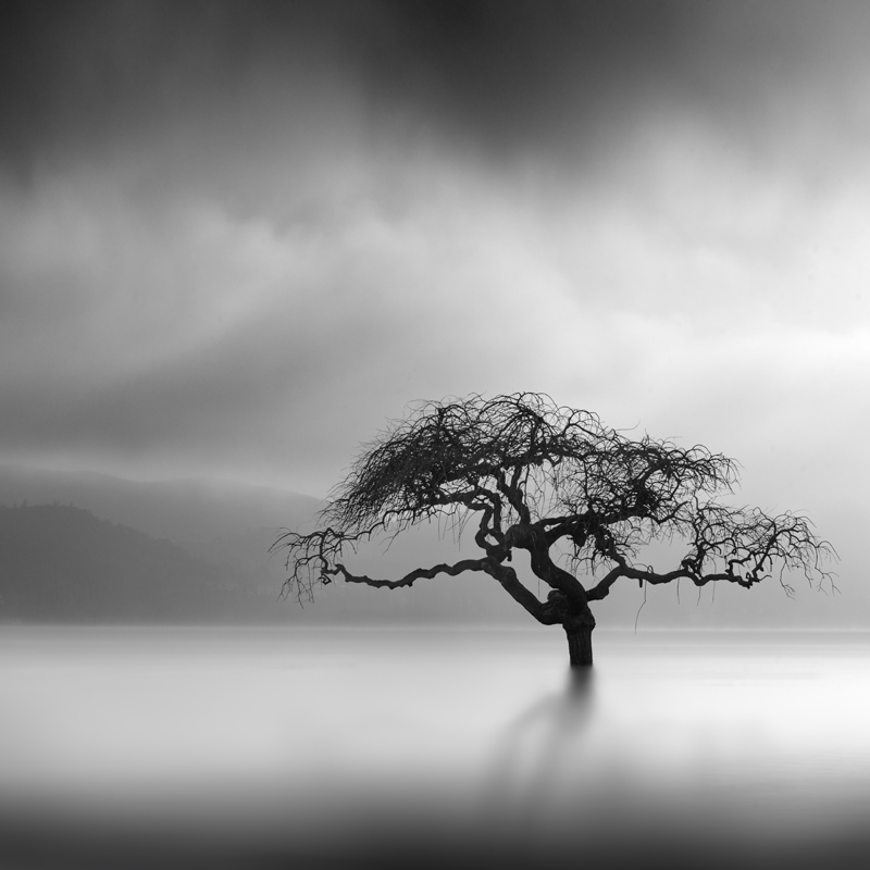Dreams by George Digalakis 2018