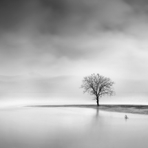 Landscape in the Mist by George Digalakis 2018