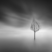 Like a Dream by George Digalakis 2018