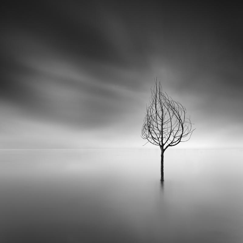 Like a Dream by George Digalakis 2018