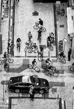 Lisbonne souvenir 2017: Les petites reines... fb/dominique.marinier.31 Les petites reines by C