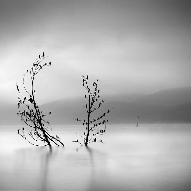 Ode to Joy by George Digalakis 2018