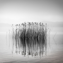 Quiet Waters by George Digalakis 2018