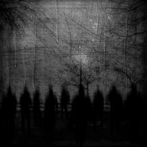 Shadows by Gus