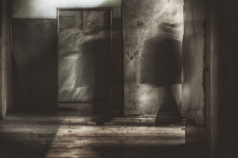 The passage by Fadwa Rouhana