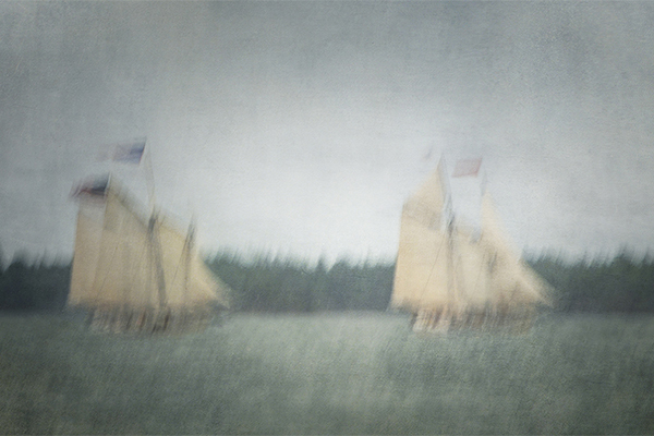 Chasing by Olga Merrill