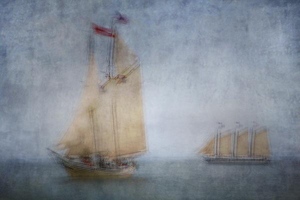 Cruising by Olga Merrill