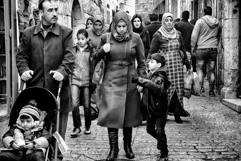 All the people: Generations 13 by Fadwa Rouhana