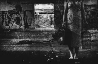 La cage vide by Sylvain Devlichevitc: fb/sylvain.devlichevitch.7
