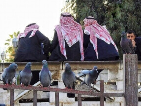 Men and birds by Mahmoud Nouelati: fb/mahmoud.nouelati1