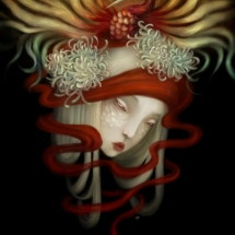 Rise by Sonya Fu