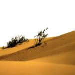 Landscape Photography by Sadiq AlQatari