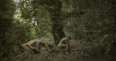 In the wood by Sandro Sardoz