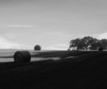 Au rythme des saisons by Thierry Lair