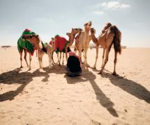 Camel Herd by Neil Villanueva