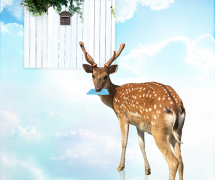 Deer messager by Ligin Lee