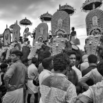 Elephant Festival by Kip Harris