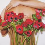 Flower Arrangements by Naraphat Sakarthornsap