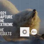 Winner of this year's Shackleton x Leica Photography Competition