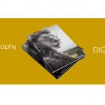 A free digital version of the Sony World Photography Awards 2021 book