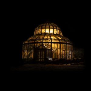 Botanic Garden by Lena Lisken