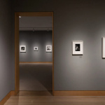 Diane Arbus curated by Carrie Mae Weems