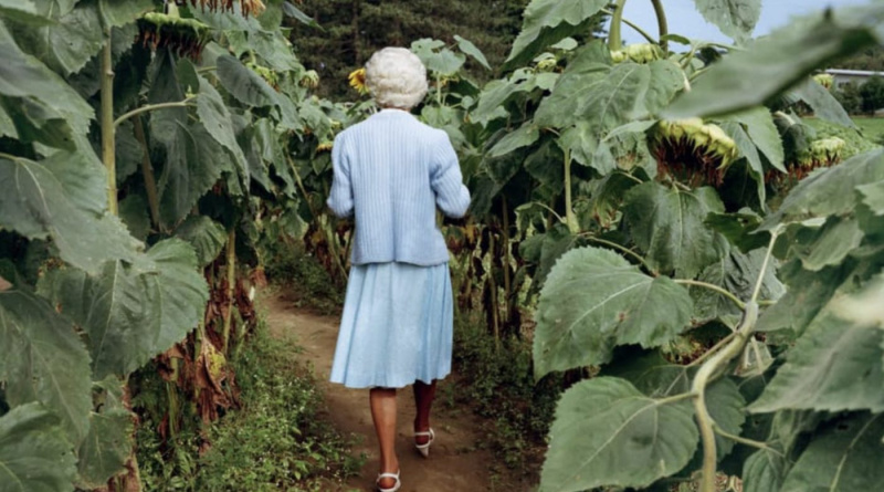 """""""The Photographer in the Garden"""" Online Exhibition and at The Alice Austen House"""