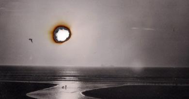 Peter Miller: Dear Photography