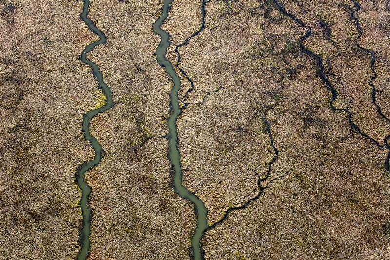 Healing Landscape: A Damaged World in Transition